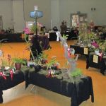 2010-Autumn-East-Rand-Orchid-Show-02