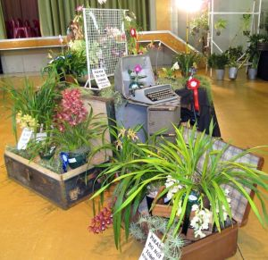 2011-Autumn-East-Rand-Orchid-Show-03