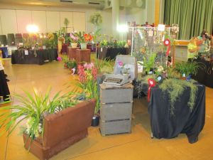 2011-Autumn-East-Rand-Orchid-Show-06